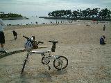 自転車道 加古川 自転車道 : ... )加古川右岸自転車道